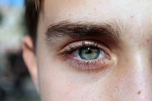 eye-195684_640.jpg